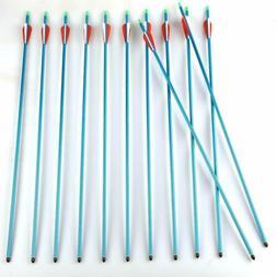"""12Pcs 30"""" Blue Aluminium Arrows Target Practice Arrows fit 3"""
