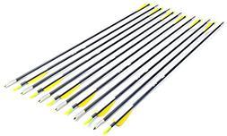 ANTSIR 28-Inch Fiberglass Archery Target Arrows,Practice Arr