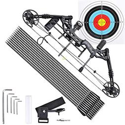 Archery Compound Bow Right Hand Professional Set w/ 12pcs Ca