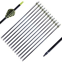PG1ARCHERY Archery Target Carbon Arrows, 30 inch Practice Ar