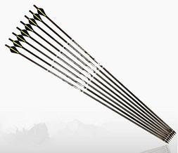 "e5e10 100% Pure Carbon Arrow, 31"" Archery Arrows Spine 300 a"