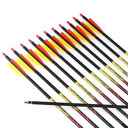 Misayar 12Pcs/lot 30 Inch Carbon Arrows Fletched 3 Inch Vane