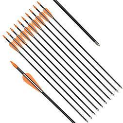 Elong Fiberglass Arrows Archery 24 Inch Target Shooting Prac