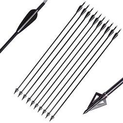PG1ARCHERY 30 Inch Fiberglass Hunting Arrows, 10 Pack Archer
