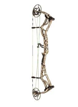 Bear Kuma Compound Bow