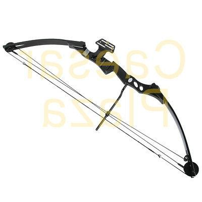 55 Black Hunting 150 80 Crossbow Arrows