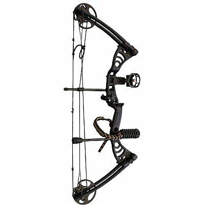 hunting bow compound