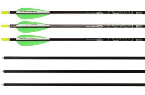 Genesis Bows Kit with Archery Bundle