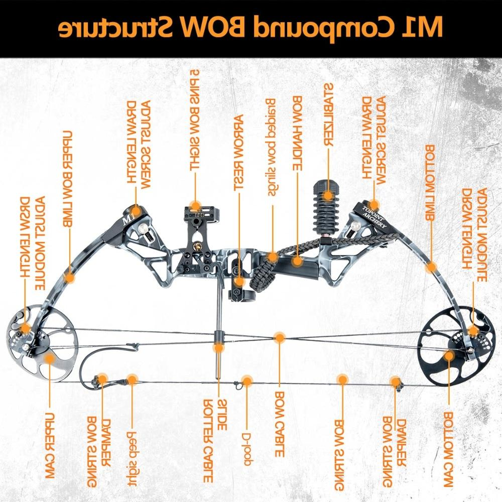 US Warehouse <font><b>Bow</b></font> inch Length,19-70Lbs Draw Weight,320fps IBO LIMBS IN