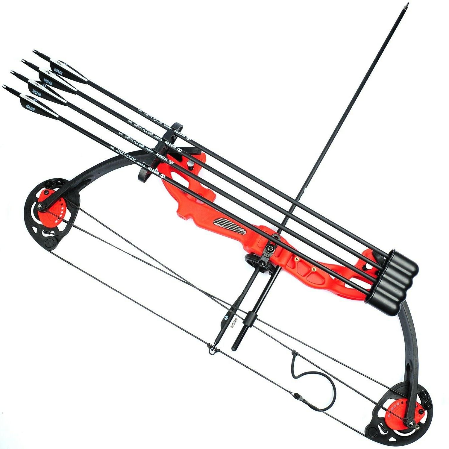 Compound Bow Archery Set Teens Practice Hunting