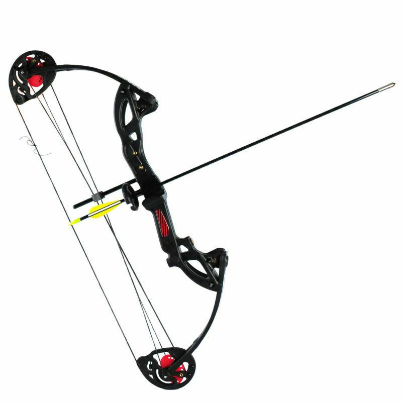 US Adult Hunting Compound Bow W/Brush+3pcs Arrows Black